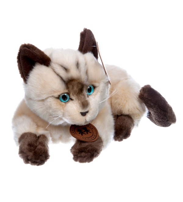 Мягкая игрушка Сиамский кот (25см) – фото № 5