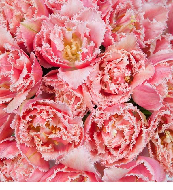 Букет-соло эксклюзивных тюльпанов Queensland (15,25,35,51,75 или 101) – фото № 4