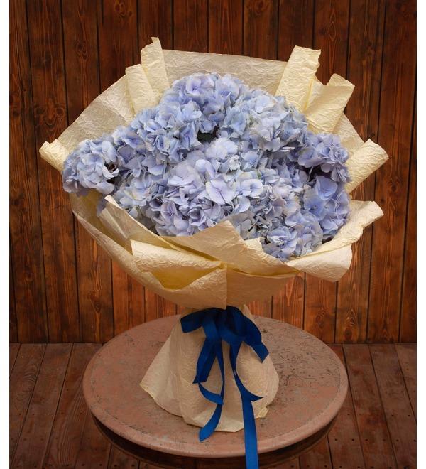 Букет-соло голубых гортензий (5,7,9,15,21 или 25) – фото № 1