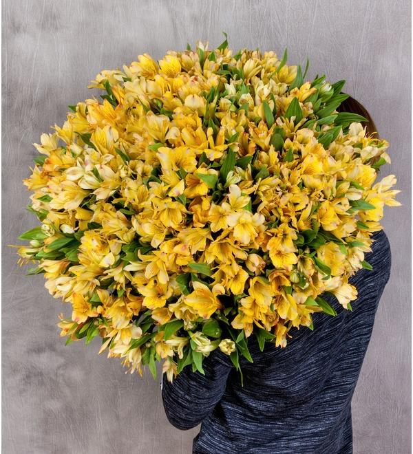 Bouquet Gold (25, 51 or 101 alstroemeria) – photo #1