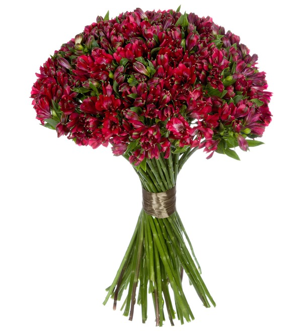 Bouquet Ruby (25, 51 or 101 alstroemeria) – photo #3