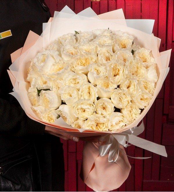 Bouquet-solo David Austin Patience (15,25,51 or 75) – photo #1