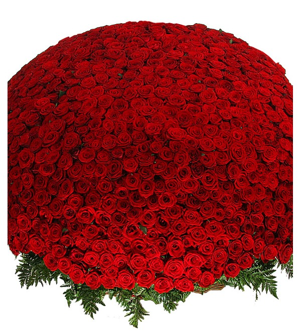 Композиция из 1001 розы Сенсация – фото № 1