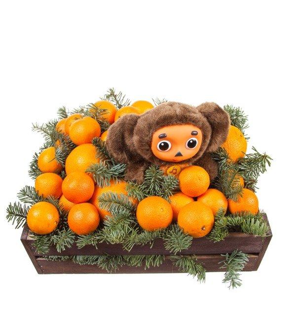 Подарочное кашпо Посылка с апельсинами – фото № 5