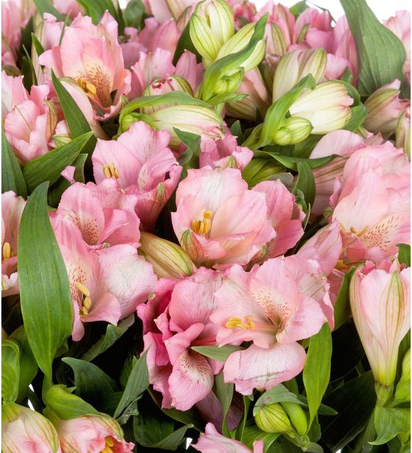 Букет-соло Розовые альстромерии (15,25,35,51,75 или 101) – фото № 5