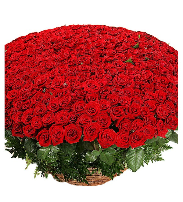 Композиция из 501 розы Гран При Любовь всегда права! SPBAR633 SAN – фото № 4