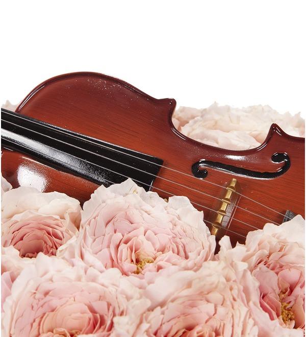 Композиция Скрипка – фото № 4