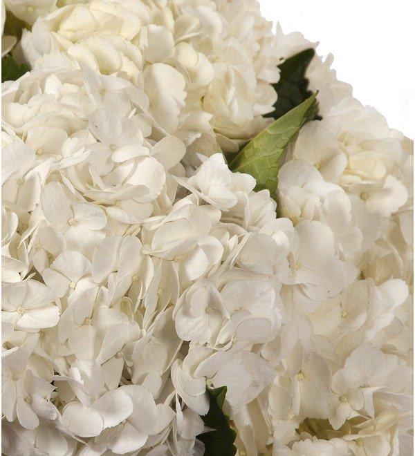 Букет-соло Белые гортензии (5,7,9 или 15) – фото № 2