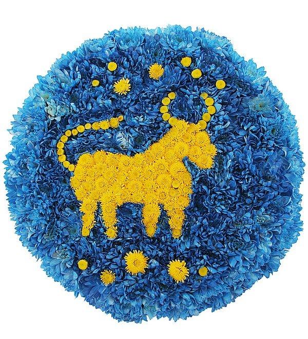 Знак зодиака Телец (21 апреля - 20 мая) – фото № 1