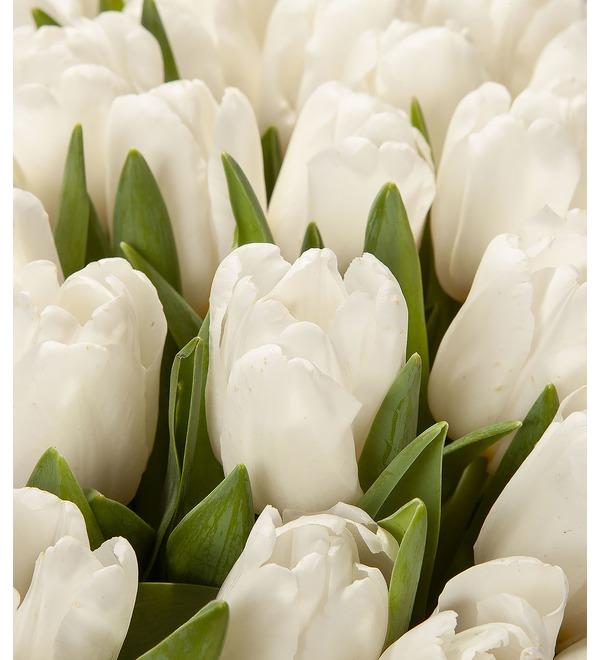 Букет-соло Белые тюльпаны (15,25,35,51,75,101 или 151) – фото № 3