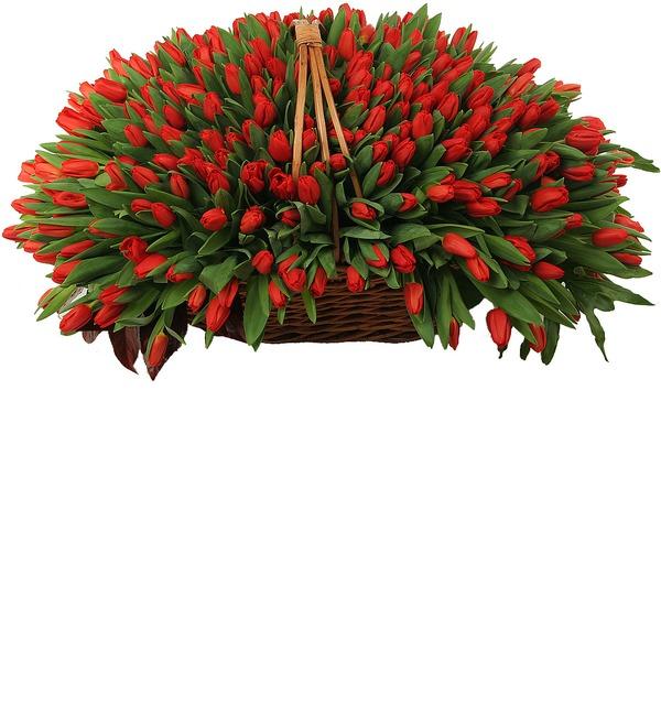 Композиция из красных тюльпанов (301 или 501) – фото № 3