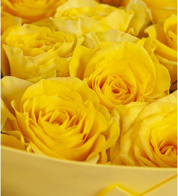 Bouquet-solo Yellow roses (25.51.75 or 101) – photo #2