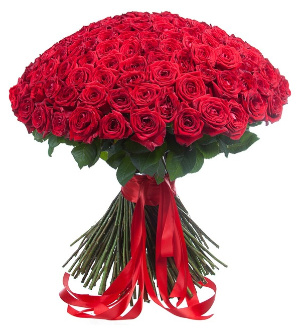 Bouquet of 201 red roses You are my world! – photo #1