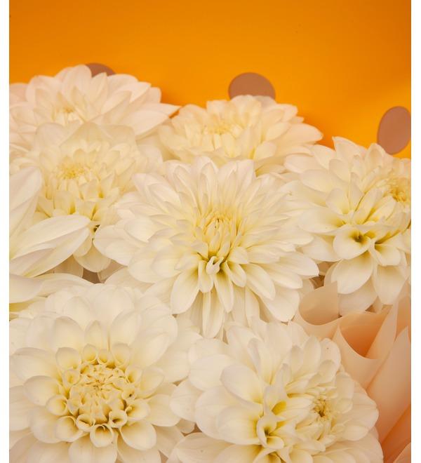 Букет-соло белых георгин (5,7,9,15,25,35,51 или 75) – фото № 2