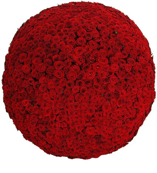 Композиция из 1001 розы Сенсация – фото № 4