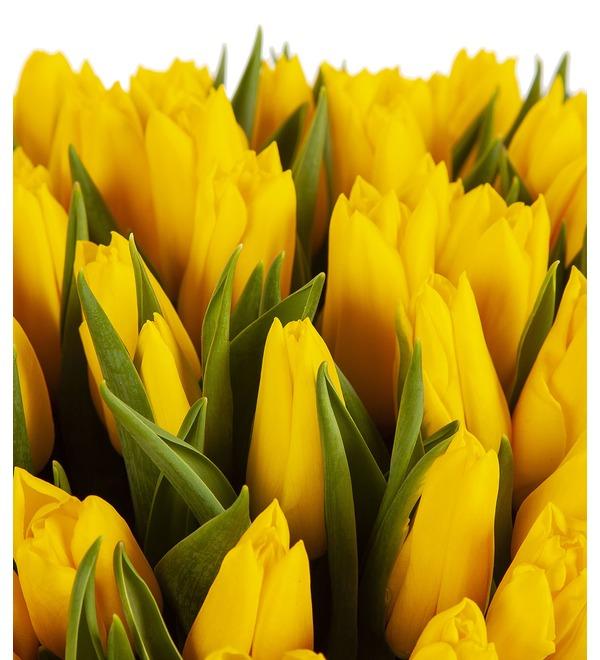 Букет-соло Тюльпаны Strong Gold (25,35,51,75 или 101) – фото № 2