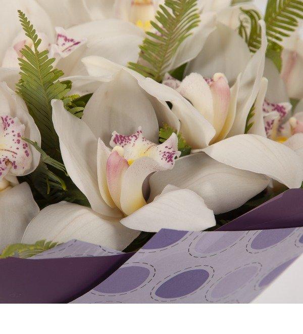 Букет-соло Белые орхидеи (15,25,35,51,75,101 или 151) – фото № 3
