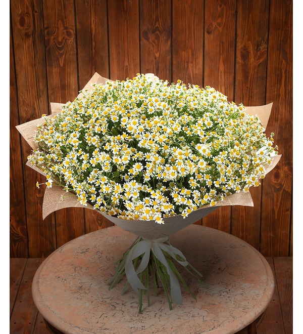 Bouquet Daisies for a wonderful girl – photo #1