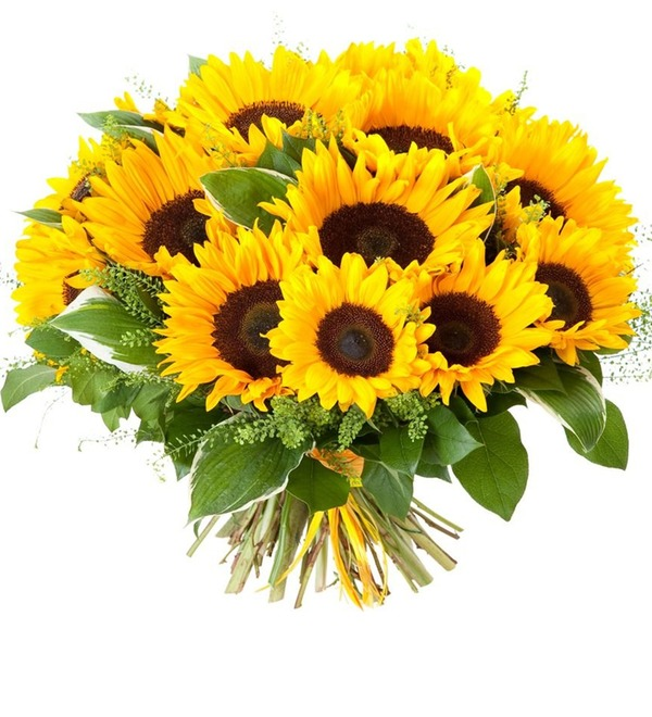 Bouquet Sunflowers – photo #1
