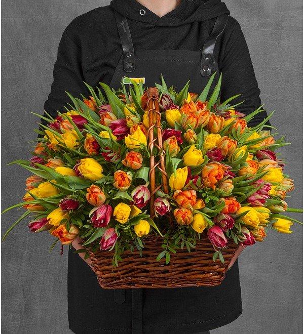 Композиция из пионовидных тюльпанов (151, 301 или 501шт.) – фото № 1