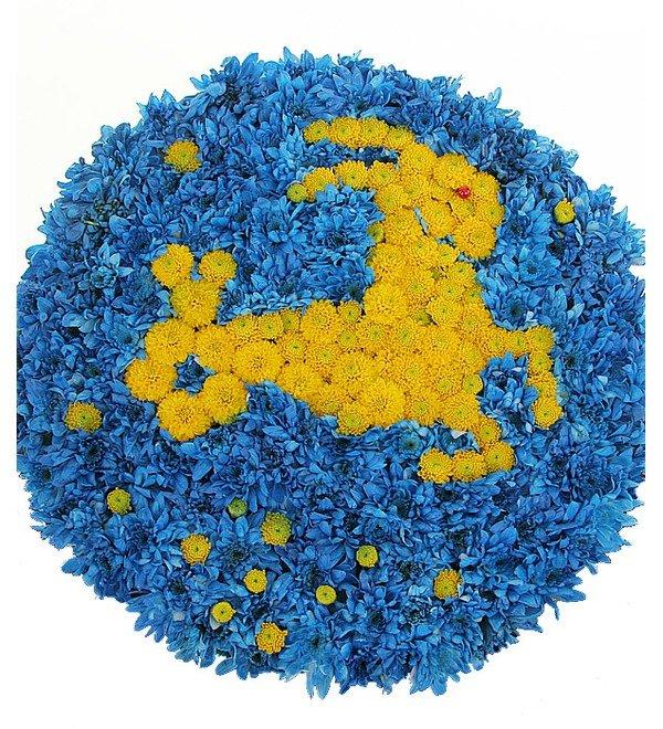 Знак зодиака Козерог (22 декабря - 20 января) – фото № 1