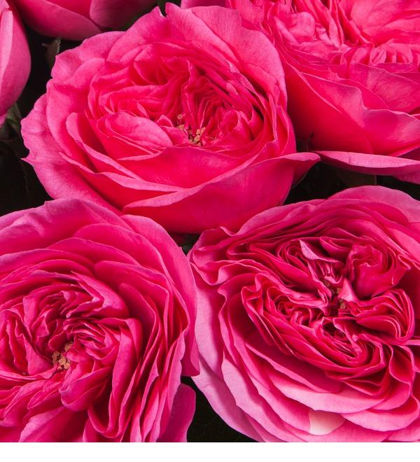 Букет из пионовидных роз Баронесса (7,9,15,25,35 или 51) – фото № 3