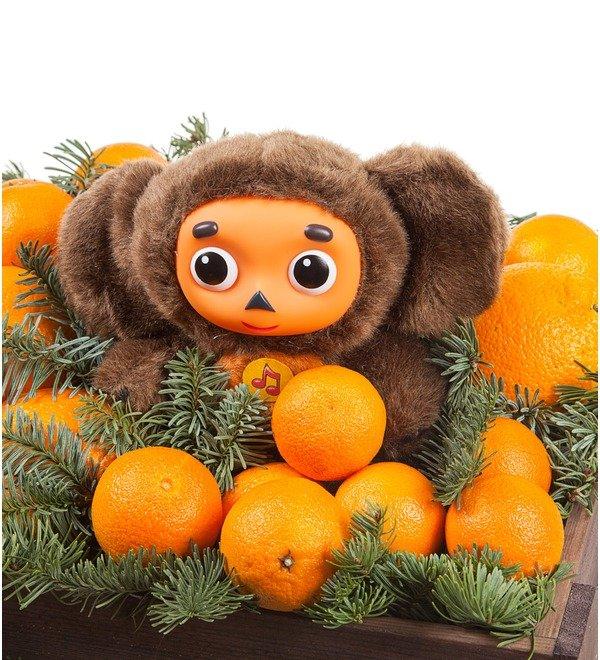 Подарочное кашпо Посылка с апельсинами – фото № 2