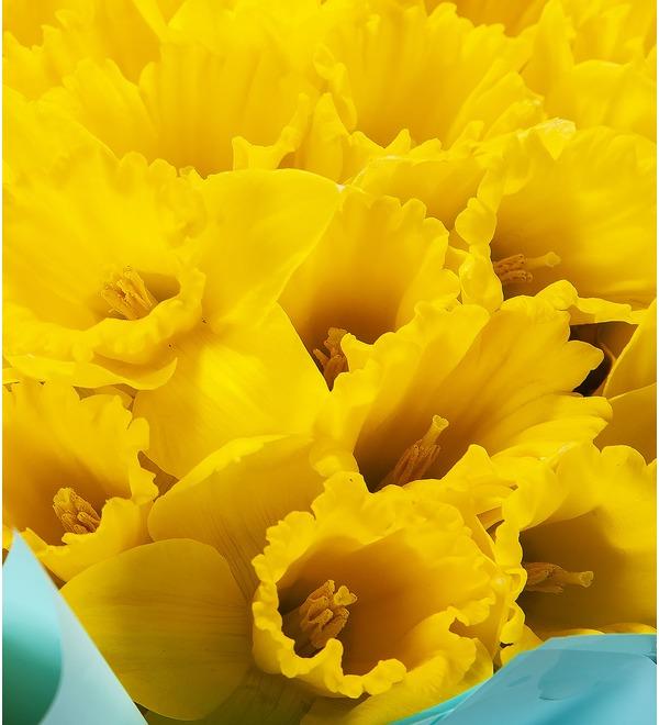 Букет-соло Жёлтые нарциссы (25,51,75 или 101) – фото № 3