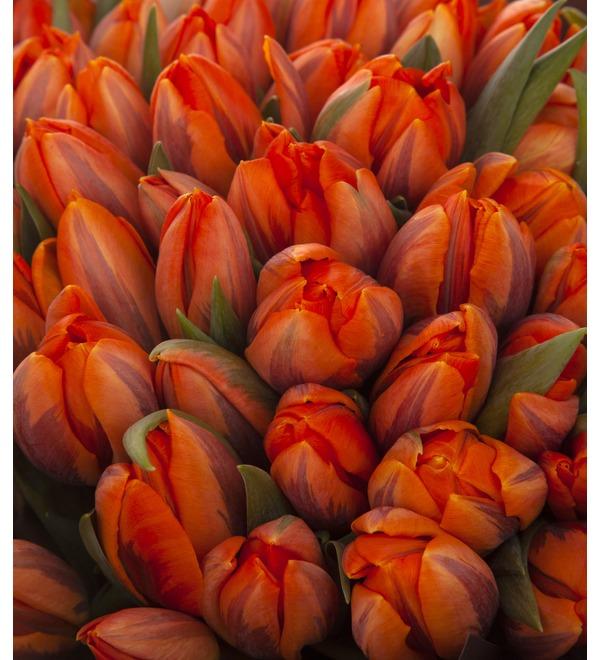 Букет-соло Тюльпаны Orange Princess (35,51,75,101 или 151) – фото № 3