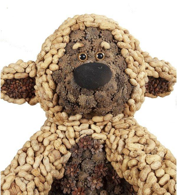 Композиция Ореховый медвежонок – фото № 2