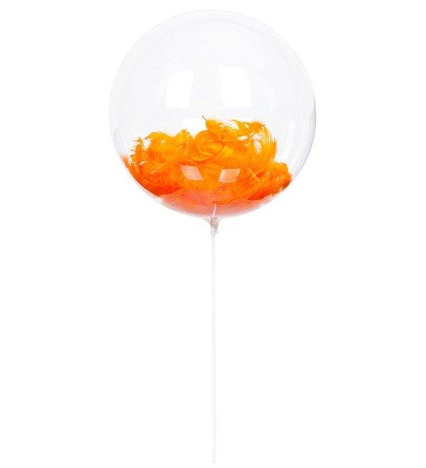 Эксклюзивный воздушный шар с перьями – фото № 3