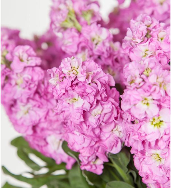 Букет розовой маттиолы (15, 25 или 51) – фото № 2