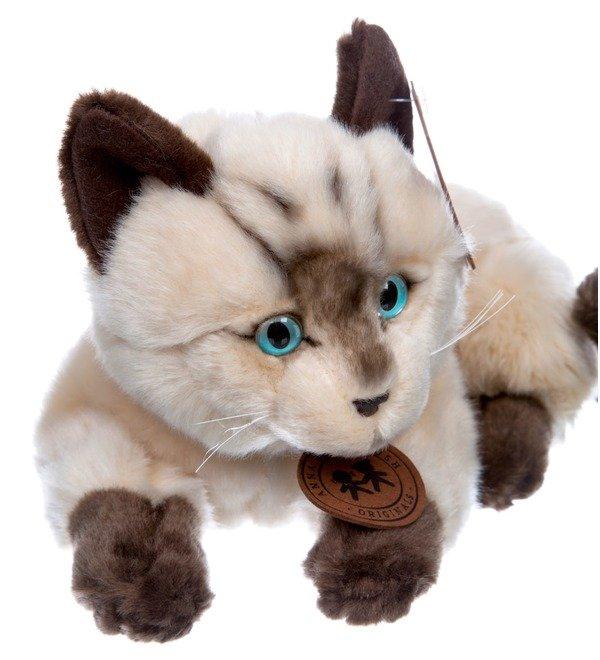 Мягкая игрушка Сиамский кот (25см) – фото № 4