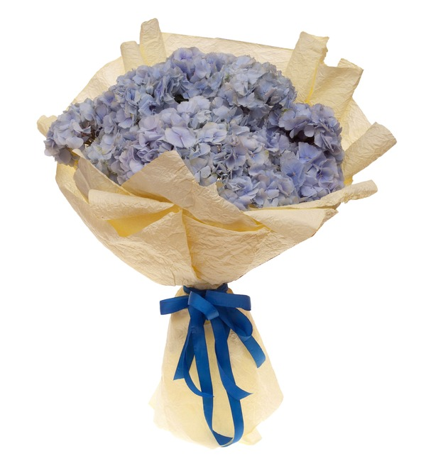Букет-соло голубых гортензий (5,7,9,15,21 или 25) – фото № 4