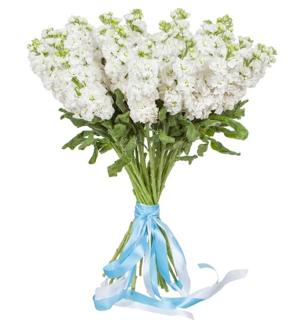 Букет белой маттиолы (15, 25 или 51) – фото № 4