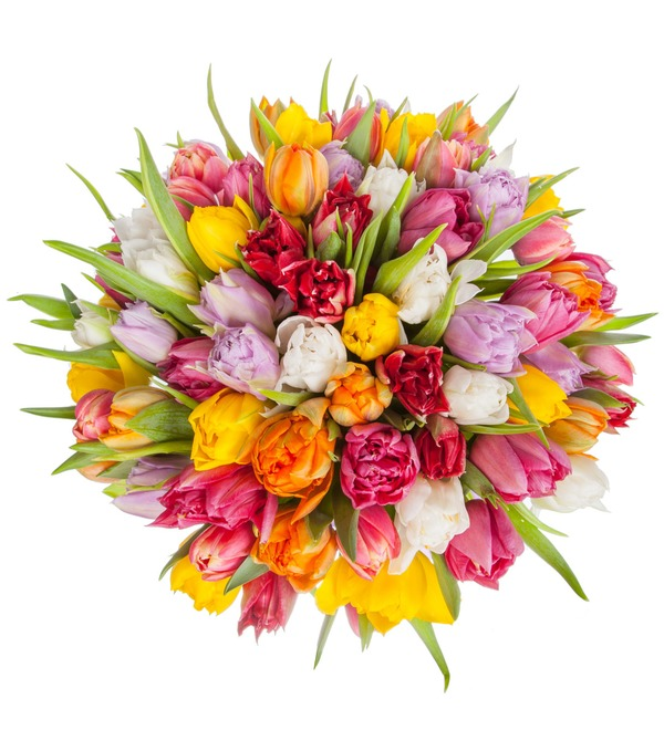Букет-оркестр Пионовидные тюльпаны (25,35,51,75 или 101) – фото № 3