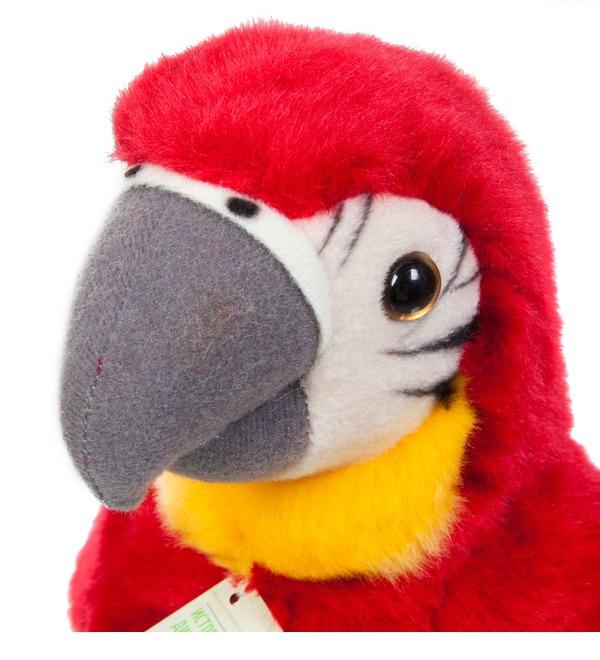 Мягкая игрушка Красный попугай (18 см) – фото № 3