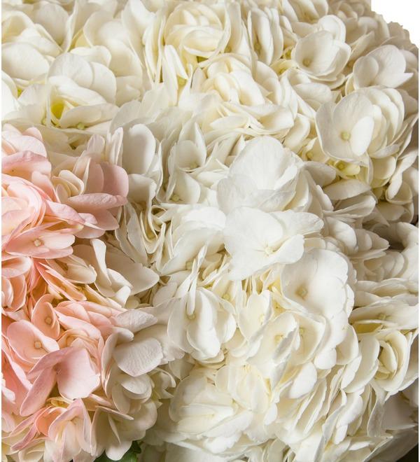 Bouquet of multi-colored hydrangeas (9, 13 or 25) – photo #2