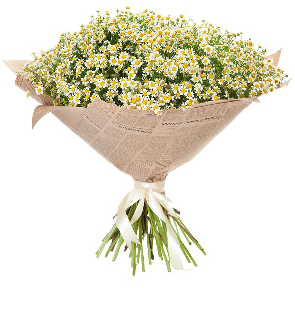 Bouquet Daisies for a wonderful girl – photo #5