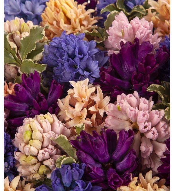 Композиция Разноцветные гиацинты (101,201 или 301) – фото № 2
