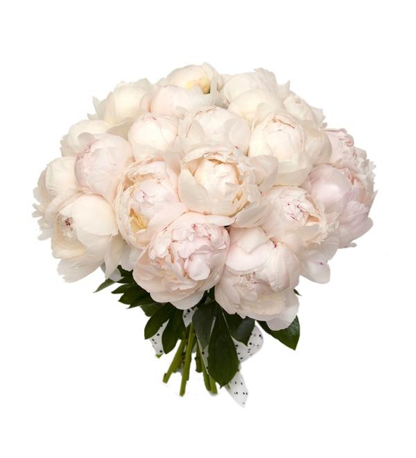 Букет-соло пионов Duchesse (15,25,35,51,75 или 101) – фото № 5
