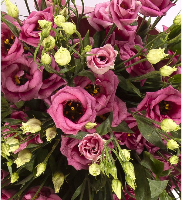 Bouquet-solo Pink eustoma (15,25,51 or 101) – photo #3