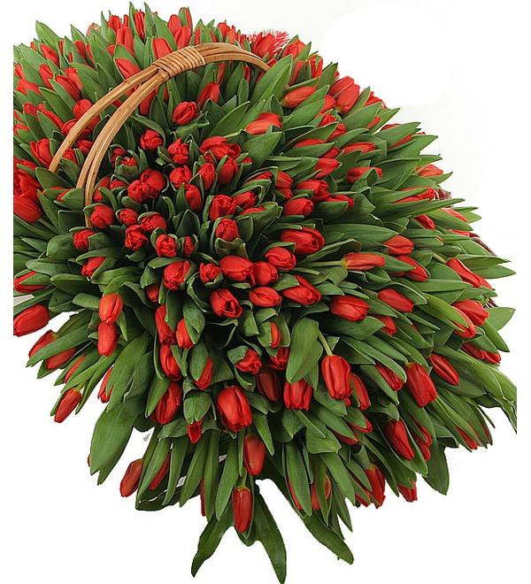 Композиция из красных тюльпанов (301 или 501) – фото № 1