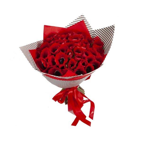 Букет-соло Красные анемоны (15,25,51 или 75) – фото № 5