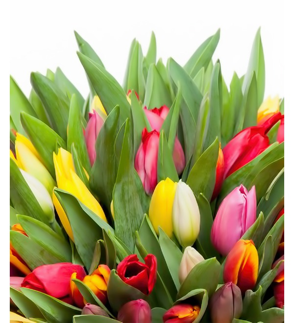 Bouquet of tulips Like it all (31 or 51) – photo #3