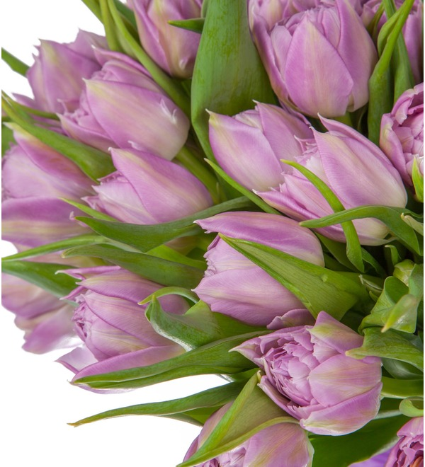 Bouquet of Double Price peony tulips (25, 51 or 101) – photo #2