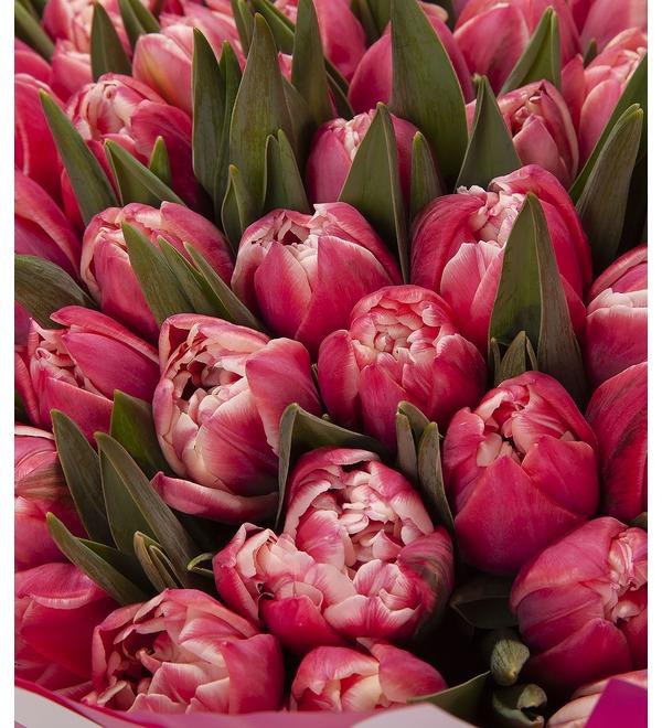 Букет-соло Тюльпаны Columbus (15,25,35,51,75 или 101) – фото № 2