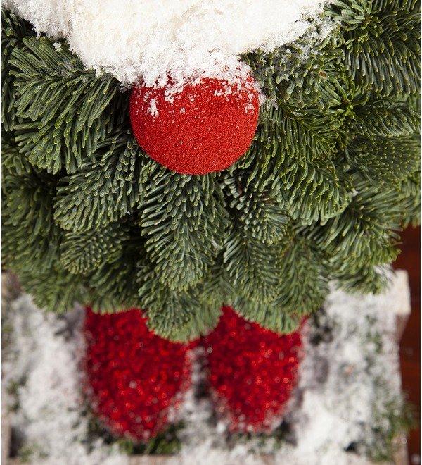 Композиция Рождественский гномик – фото № 2