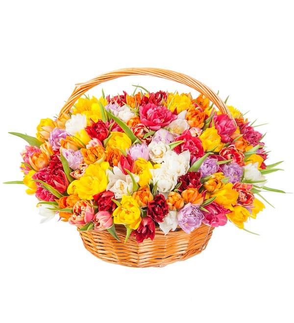 Композиция из разноцветных пионовидных тюльпанов (25, 51 или 101) – фото № 4