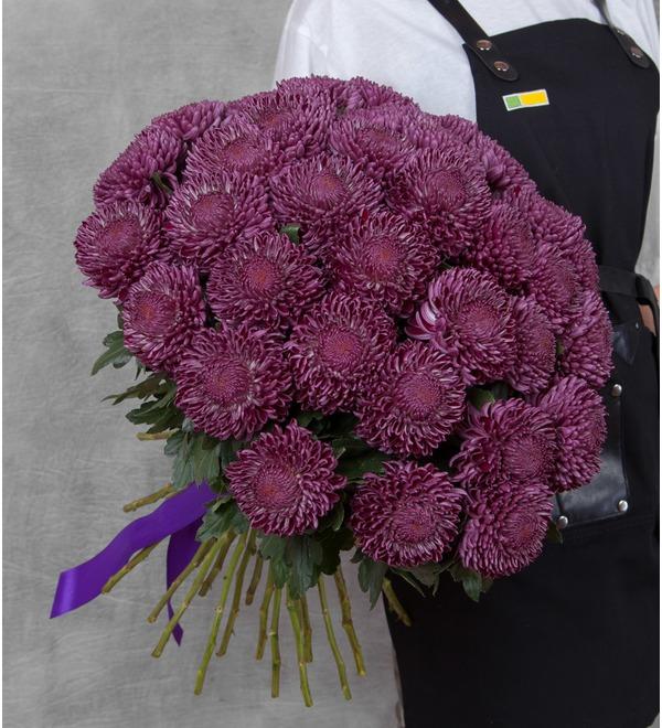 Букет-соло хризантем Bigoudi Purple (9,15,21,35 или 51) – фото № 1